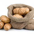 Raw Harvest potatoes in burlap sack - Stock Photo
