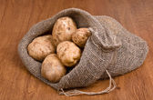 Harvest potatoes in burlap sack, sideways — Stok fotoğraf