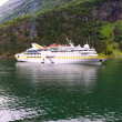 Ship in fjord. — Stock Photo