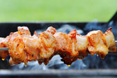 Meat on skewer. — Stock Photo