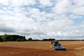 Tractor in field. — Stock Photo
