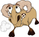 Malicious ram. A lamb — Stock Vector