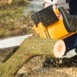 Chainsaw — Stock Photo #7293643