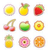 Fruity design elements — Stock Vector