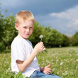 Litlle boy with dandelion — Stock Photo