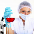 Female scientist in a chemistry laboratory — Stock Photo