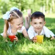 Little brother and sister in summer park — Stock Photo
