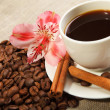 Cup of coffee with tubes of cinnamon - Stock Photo