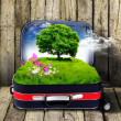 Red suitcase with green nature inside — Stock fotografie