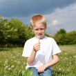 Litlle boy with dandelion — Stock Photo #7206034