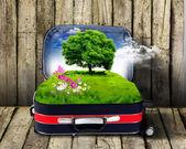 Cartera roja con la naturaleza verde interior — Foto de Stock