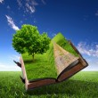 Book with green landscape inside - Stock Photo