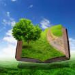Book with green landscape inside — Stock Photo