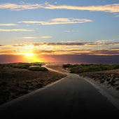 Carretera asfaltada en campo — Foto de Stock