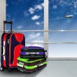 Red suitcase and plane - Stock Photo