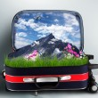 Red suitcase with snowy mountains inside — Stok fotoğraf