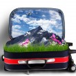 Red suitcase with snowy mountains inside — Foto de Stock
