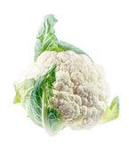 Cauliflower closeup isolated on white background — Stock Photo