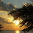 Stock Photo: Caribbesunrise