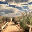 Sandy pathway to the beach — Stock Photo