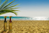 Bottles of Tequila on the beach — Stock Photo