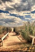 到海滩沙质通路 — 图库照片