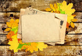 Autumn message — Stock Photo