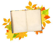 Old book and autumn leaves — Stock Photo