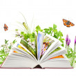 Book of nature — Stock Photo #6940307