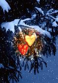 Vánoční pohádka — Stock fotografie