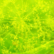 Abstract background of green color - Stock Photo