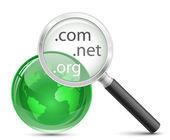 Domain search vector icon — Stock Vector
