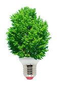 Energia verde — Fotografia Stock