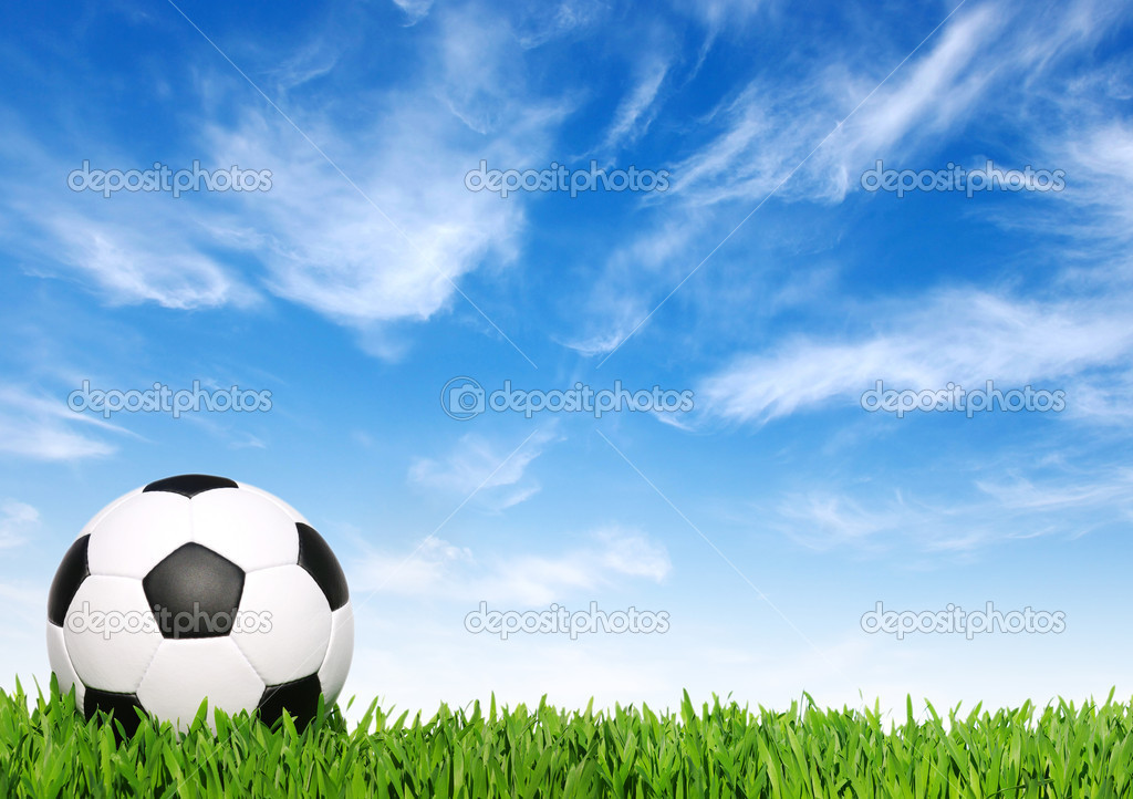 Soccer ball on the grass - football  Stock Photo #7301402