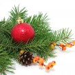 Christmas decoration — Stock Photo #7793483