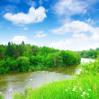 River in summer — Stock Photo