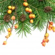 Christmas decoration — Stock Photo #7906878