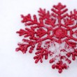 Beautiful snowflakes - Foto de Stock