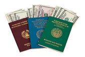 Yabancı pasaport ve abd doları üzerinde beyaz — Stok fotoğraf