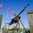 Old Anti-Aircraft Machine Gun — Stock Photo