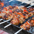 Juicy slices of meat with sauce prepare on fire (shish kebab). — Stock Photo #7688438