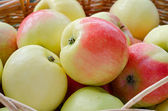 Cesta con manzanas — Foto de Stock