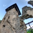 Nevitsky Castle ruins - Stock Photo