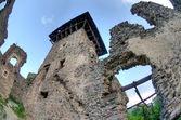 Nevitsky Castle ruins — Stock Photo