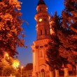 Stock Photo: Greek Catholic Cathedral RutheniCatholic Church in Uzhhorod c