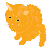 Illustration redhead cat — Vettoriale Stock