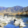 Stock Photo: Fishing on mountain river by autumn