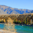 Autumn in mountain altay — Stock Photo #7513759