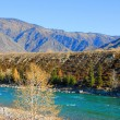 The Autumn in mountain altay — Stock Photo