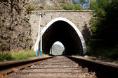 Old railroad tunnel near Lake Baikal — Foto de Stock